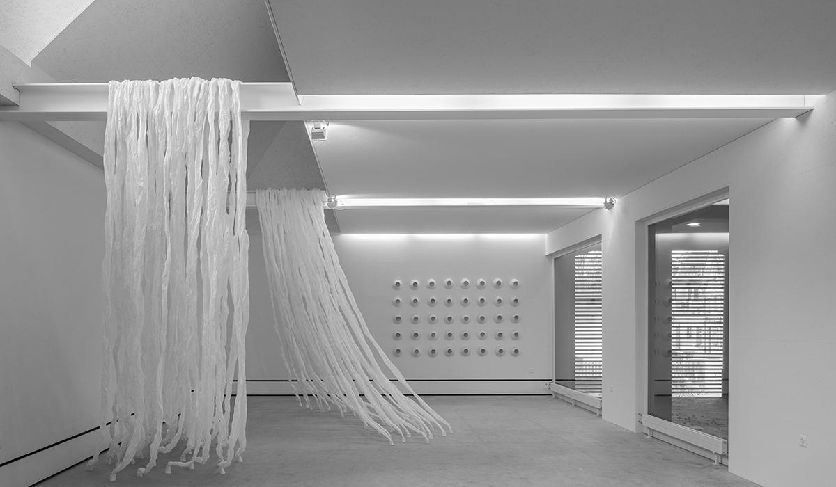 Künstler Kunsthalle Wil Eva Maria Pfaffen Ausstellung Kunst Kunstobjekte Galerie Kultur